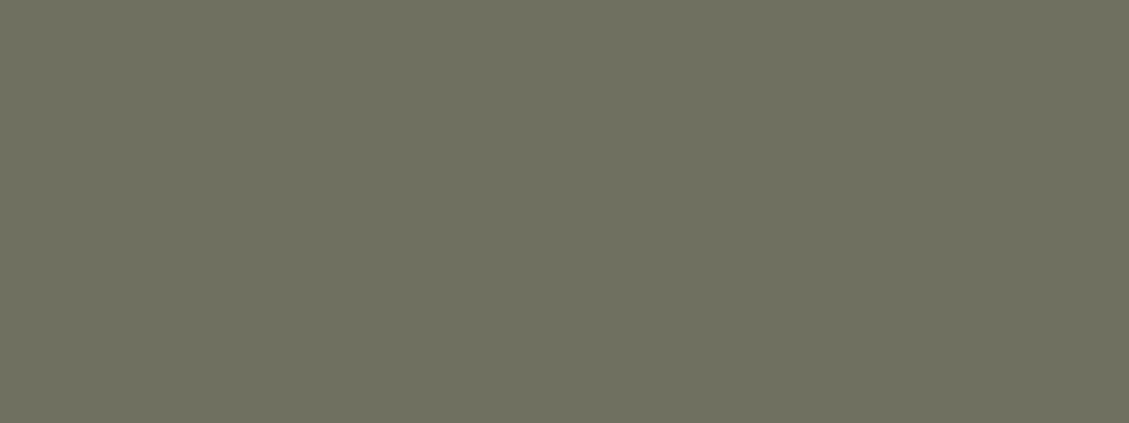 270788 wilckens nopolux ral 7003 moosgrau kunstharzlack. Black Bedroom Furniture Sets. Home Design Ideas